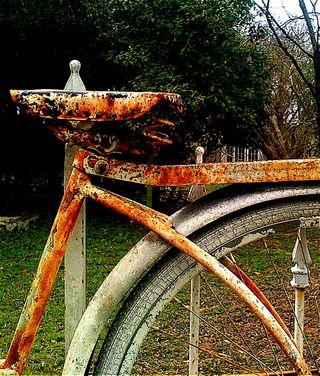 Bikeseat1