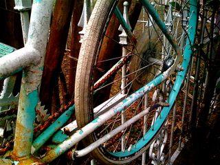 Bluebike1