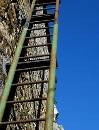 Laddergreen